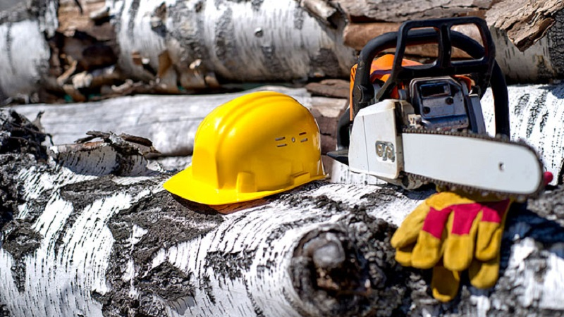 Simple Chainsaw Safety Rules to Protect You from Injury